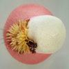 Шляпа средние поля цветок хризантемы